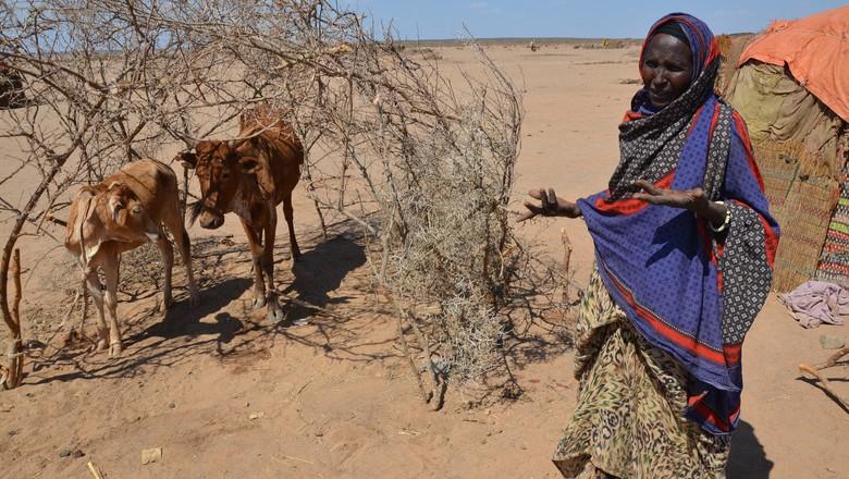 fome-somalia-el-nino-clima-africa (Foto: DFID/CCommons)