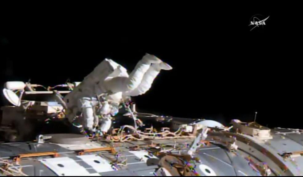 Astronautas fazem substituição de computador do lado de fora do ISS (Foto: Divulgação/Nasa)