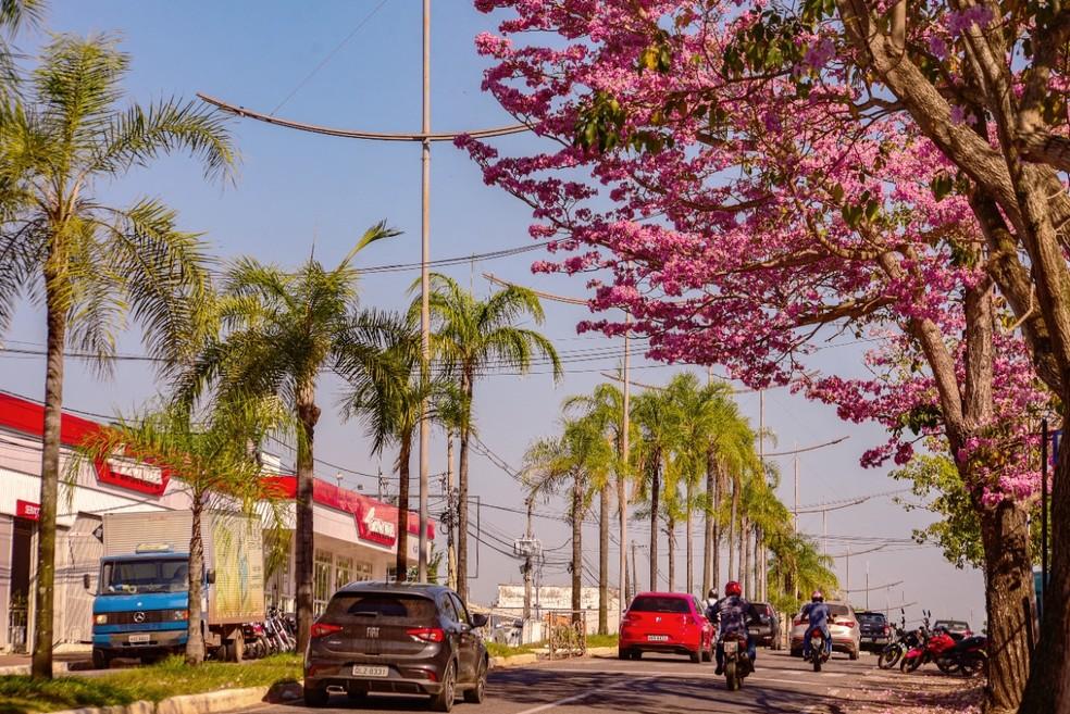 Dia segue quente e abafado nesta sexta-feira (23) no Acre  — Foto: Assis Lima/Arquivo pessoal