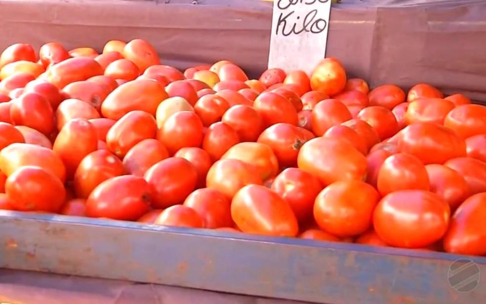 Em março, preço do tomate em centrais de abastecimento chegou a aumentar 88,6% em Goiás, maior região produtora do país — Foto: Reprodução/TV Morena