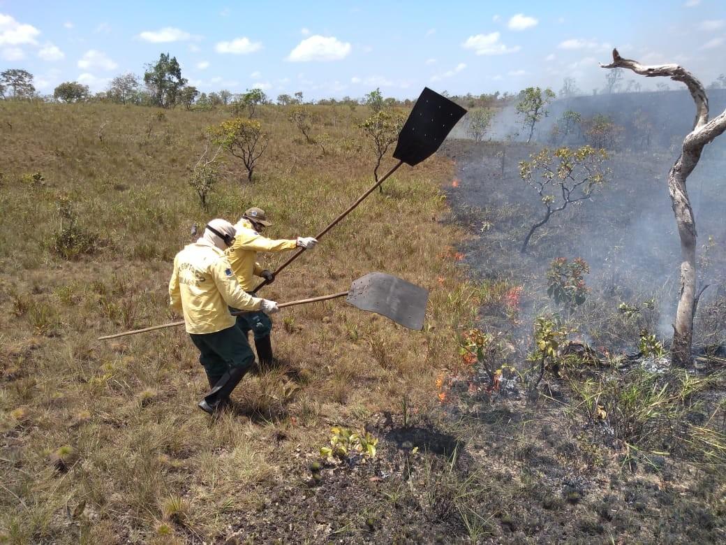 Operação combate novos focos de incêndio florestal em Calçoene e Tartarugalzinho, no AP - Notícias - Plantão Diário
