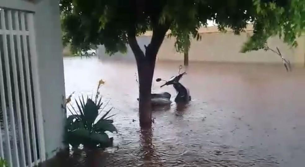 Veículos ficaram quase cobertos pela água em Votuporanga (SP) — Foto: Arquivo Pessoal