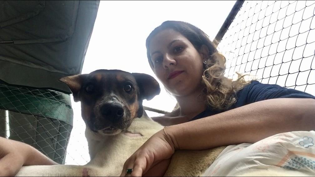 Veterinária Viviane Cristina da Silva recebeu o cão em sua clínica veterinária e cuida dele diariamente  (Foto: Viviane Cristina da Silva/Arquivo Pessoal )