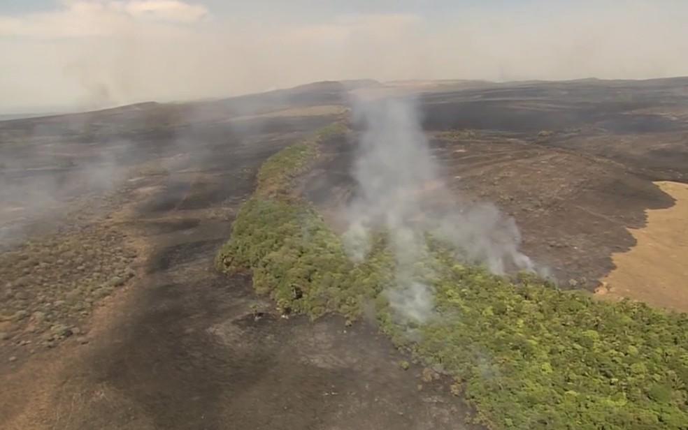 Queimada no Parque Nacional da Chapada dos Veadeiros já destruiu mais de 60 mil hectares em Goiás (Foto: Reprodução/TV Anhanguera)