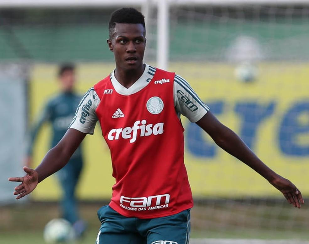 Pedrão foi integrado ao profissional para treinos (Foto: César Greco / Ag. Palmeiras / Divulgação)