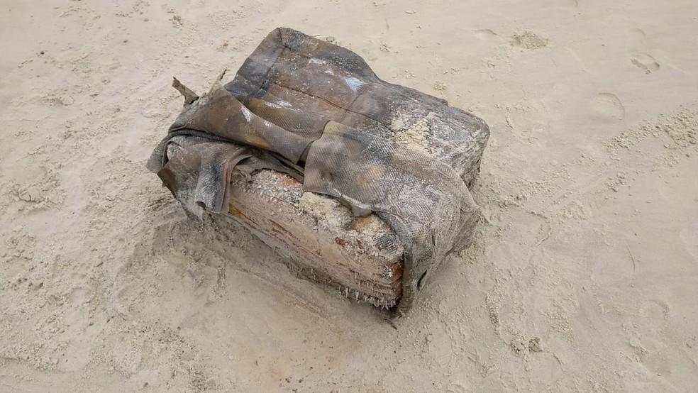 Pacotes com aspecto de couro aparecem no litoral de Alagoas — Foto: Divulgação/Instituto Biota
