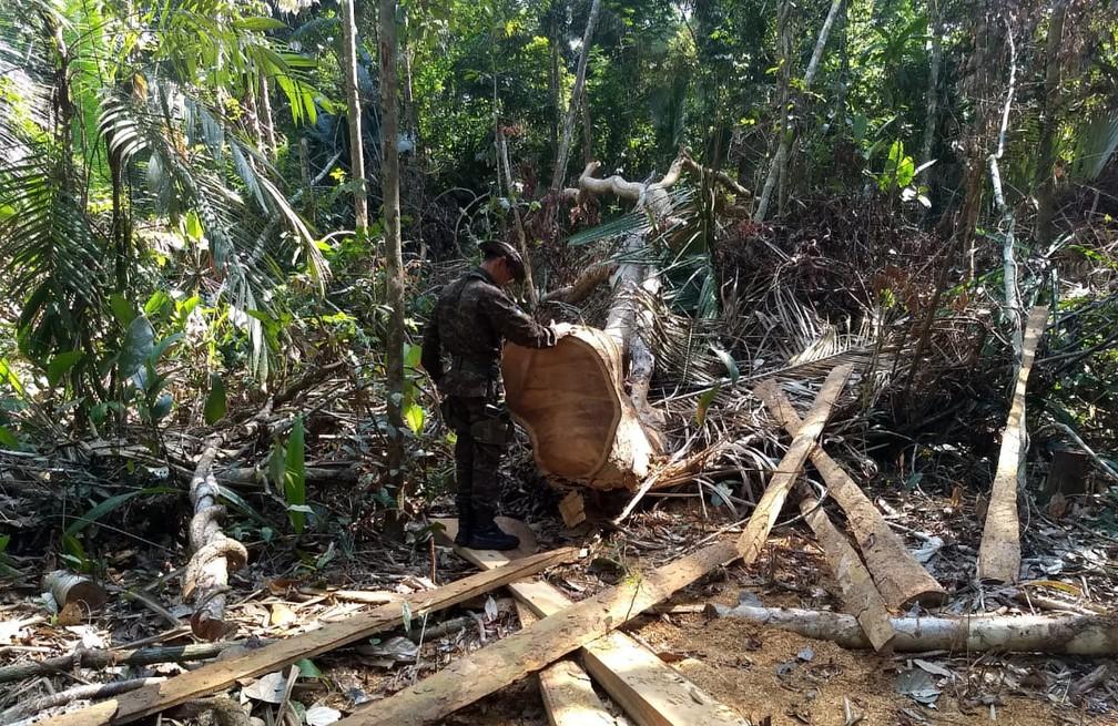 Levantamento na ação aponta que famílias da área são ameaçadas por grileiros.  — Foto: Divulgação/PMA