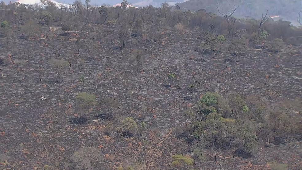Incêndio atinge Parque Estadual do Itacolomi, em Ouro Preto — Foto: Reprodução/ TV Globo