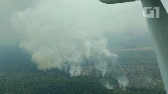Sobrevoo flagra novos desmatamentos e mais de 15 queimadas no sul do Amazonas
