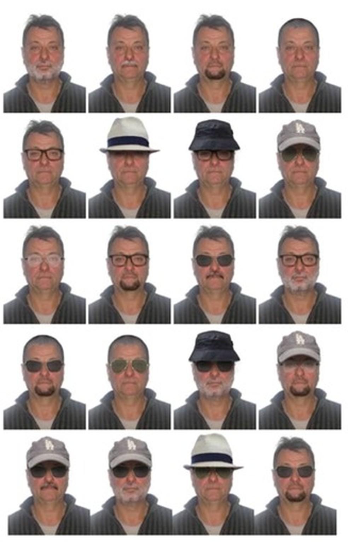 Polícia Federal elaborou retratos com possibilidades de disfarce de Cesare Battisti — Foto: Polícia Federal