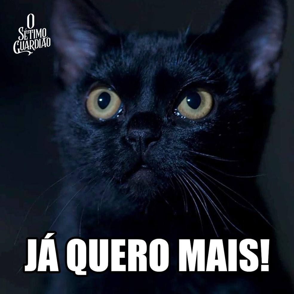 Meme León - Já quero mais — Foto: Fabricio Bianchi/Gshow