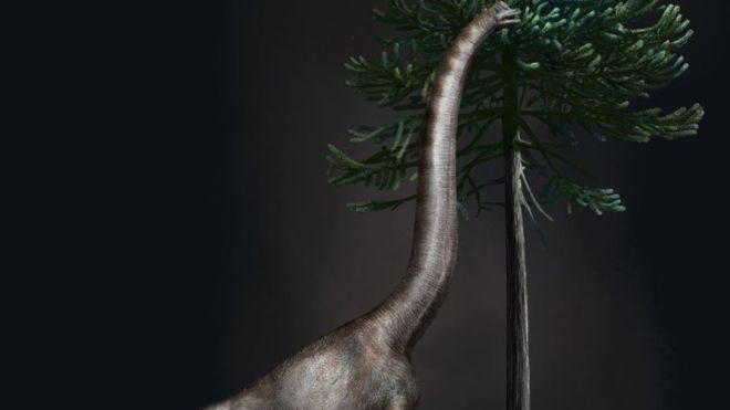 Ilustração de um braquiossauro; dinossauro foi um dos maiores a pisar na Terra (Foto: DAVIDE BONADONNA/BBC)