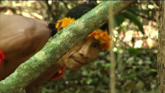 MPF pede medidas urgentes à justiça para evitar invasão terras indígenas no MA