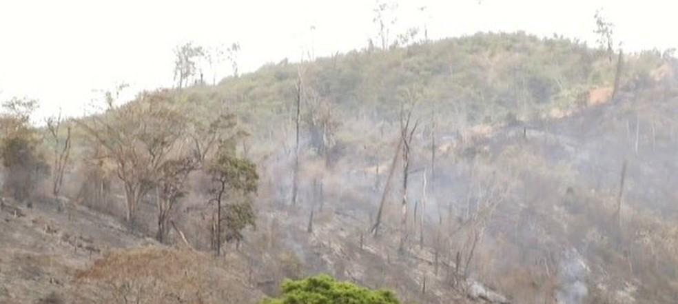 Incêndio começou em propriedade particular e se alastrou para o Parque — Foto: Inter TV / Reprodução