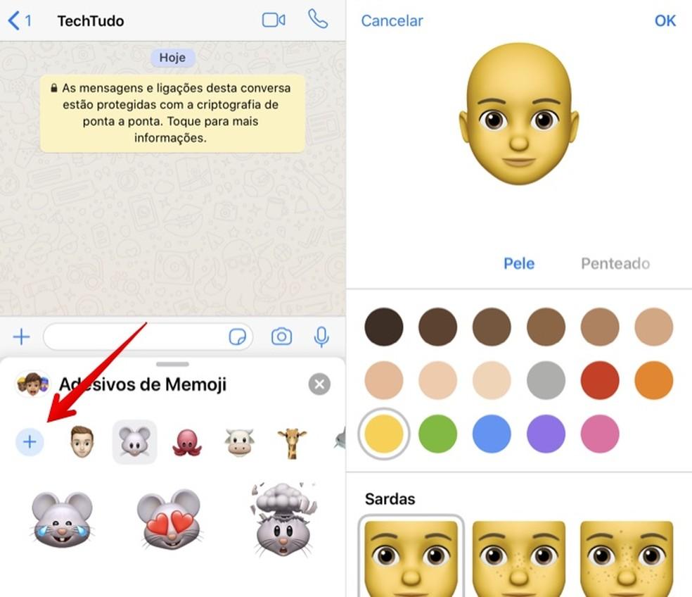 Acessando os Memojis pelo WhatsApp e criando seus próprios — Foto: Reprodução/Helito Beggiora