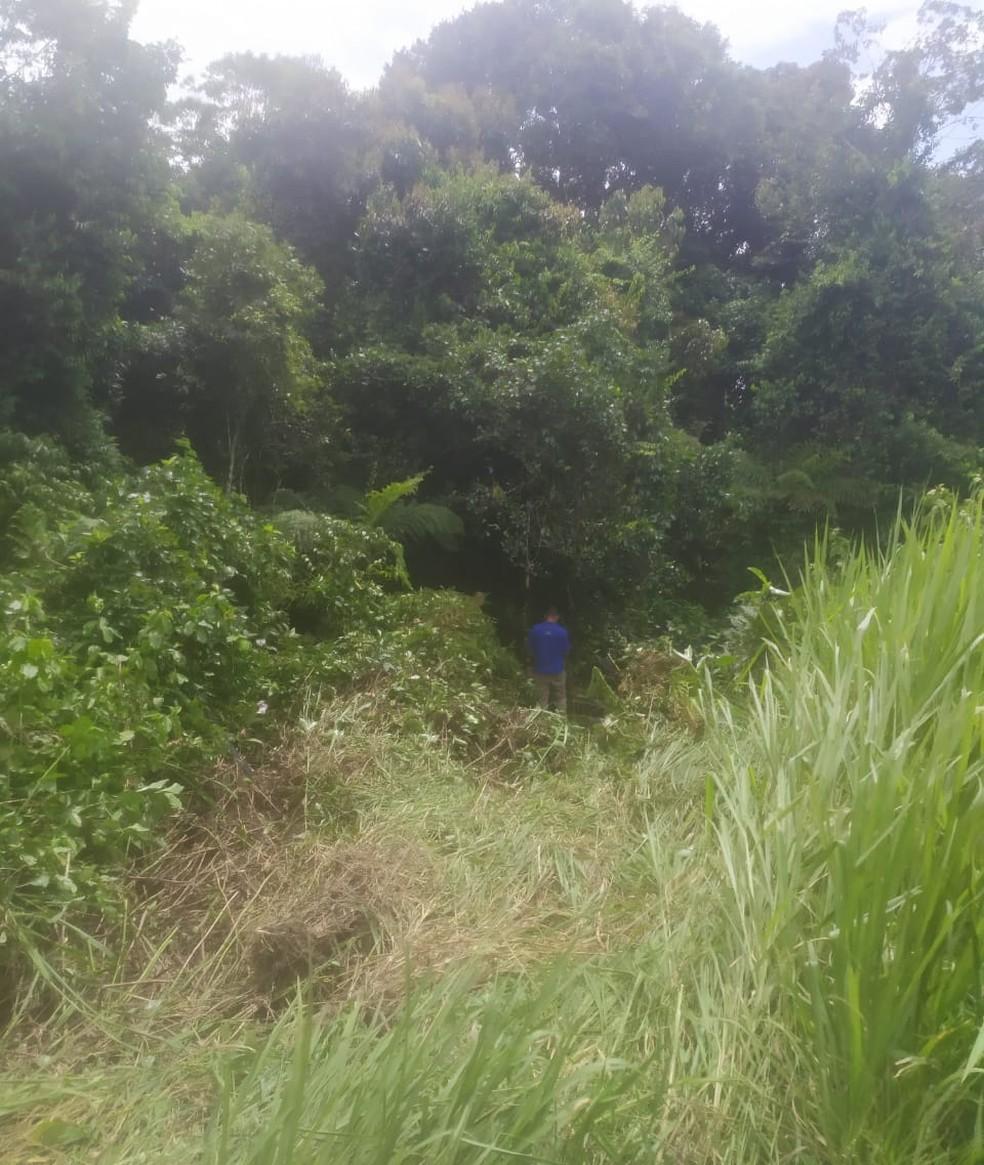 Carro caiu em uma área de mata próxima a rodovia em Bertioga, SP — Foto: Robsom dos Santos/Arquivo Pessoal