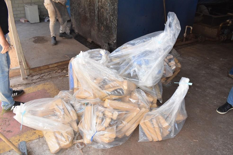 Drogas apreendidas na região de Avaré (SP) foram destruídas pela polícia — Foto: Polícia Civil/Divulgação