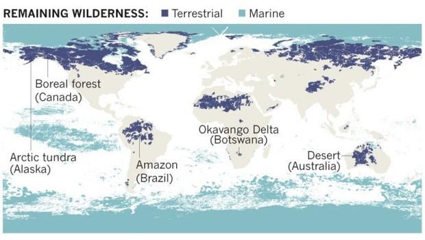Rússia, Canadá e Austrália, Estados Unidos e Brasil abrigam a maior parte da natureza remanescente no mundo (Foto: Reprodução/Nature)