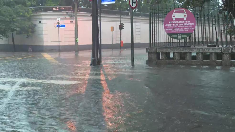 Chuva forma bolsões d´água no Jardim Botânico — Foto: Reprodução/TV Globo