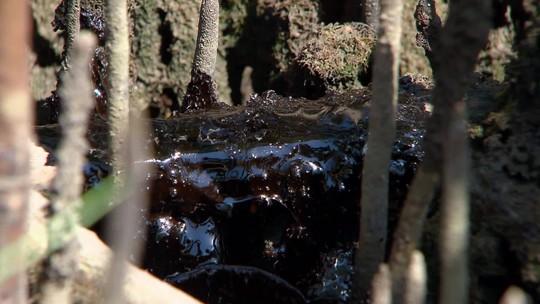 Mourão e ministro da Defesa dizem que investigação de manchas de óleo está quase concluída