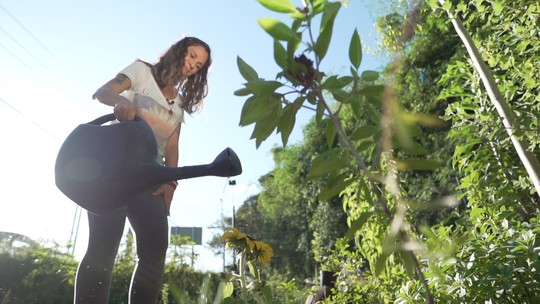 Funcionária pública cria horta comunitária no ambiente de trabalho