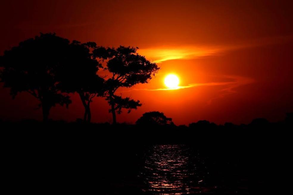 -  Área de Proteção Ambiental  APA  Paytuna e nas proximidades do Parque Estadual de Monte Alegre  Pema   Foto: Agência Pará/Divulgação