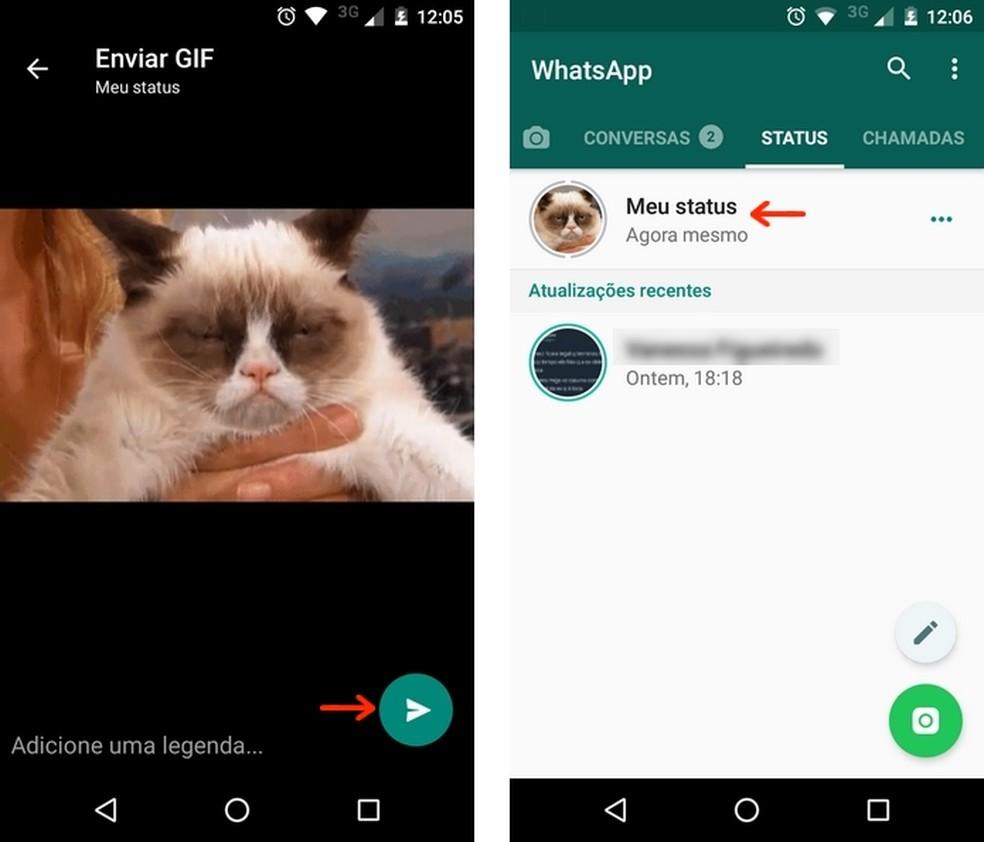 WhatsApp Status permite publicar fotos, vídeos e GIFs dentro do aplicativo (Foto: Reprodução/Raquel Freire)