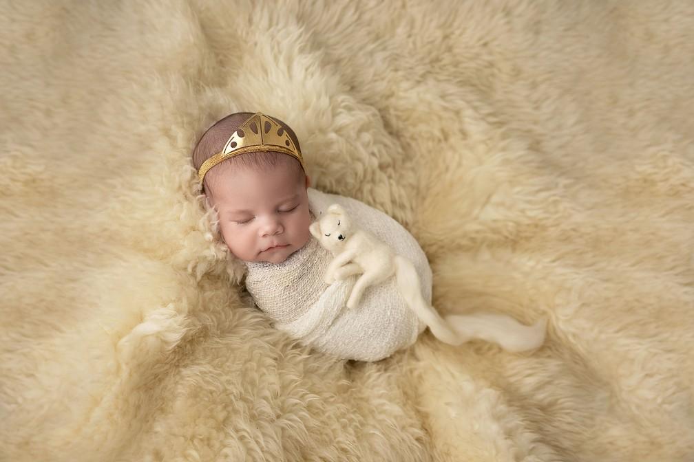 Cenário faz referência à neve e à pequena loba da personagem Arya — Foto: Adriana Margotto
