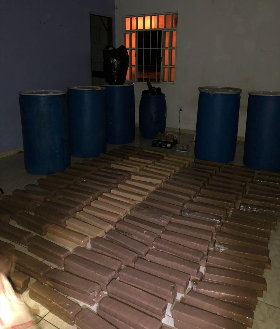 Mais de 230 quilos de drogas foram apreendidos (Foto: Polícia Civil/Divulgação)
