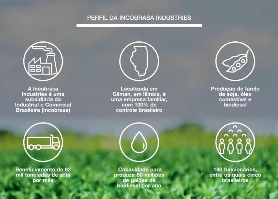 Perfil da Incobrasa Industries (Foto: Estúdio de Criação)