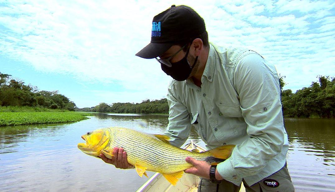 Pesca de dourados auxilia pesquisadores em Pirassununga (SP)
