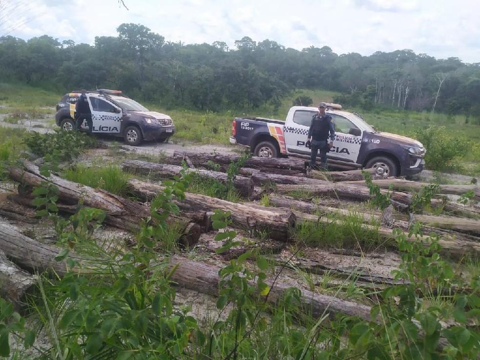 Sete homens são presos retirando madeira de área indígena em Campinápolis (MT) — Foto: PMMT