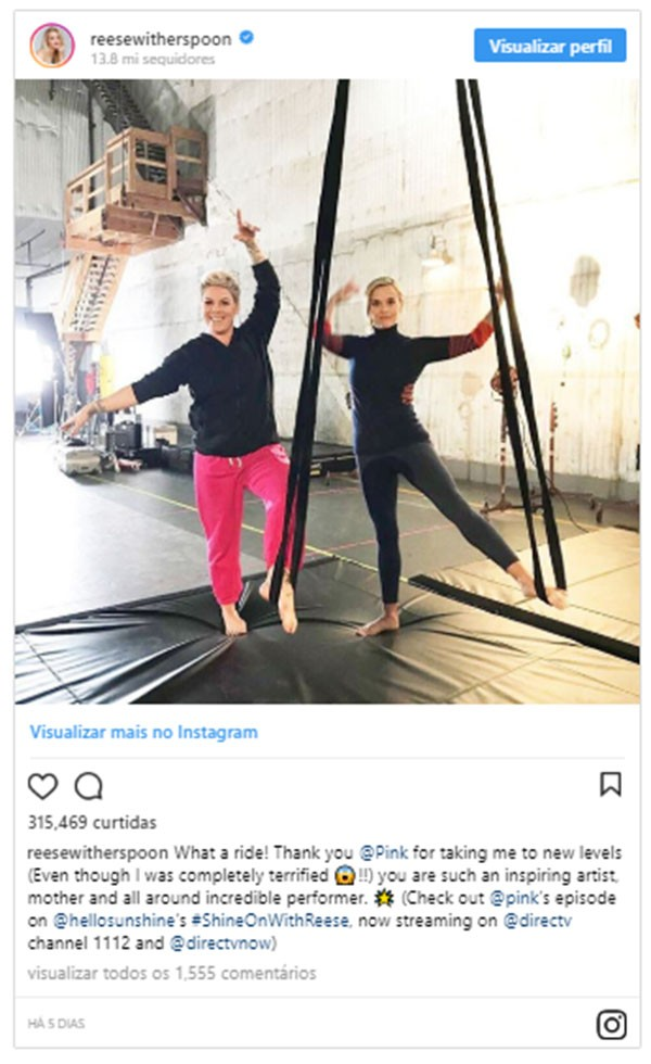 Reese Witherspoon e Pink (Foto: Instagram)