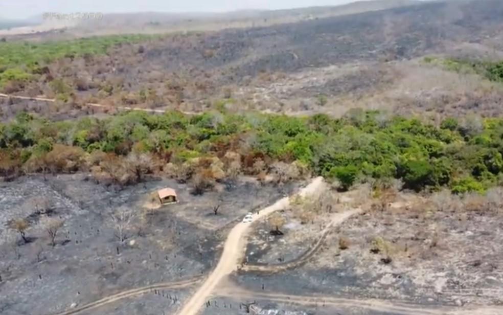 Incêndio na Chapada dos Veadeiros consome área equivalente a 18 mil campos de futebol — Foto: Reprodução/TV Globo