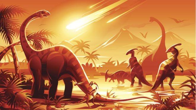Qual será a espécie dominante na Terra se os seres humanos forem extintos? thumbnail