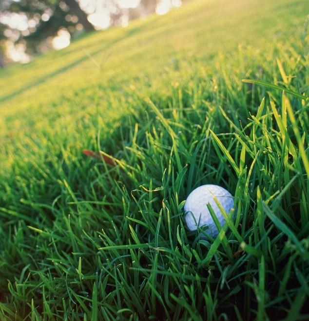 Bola de Golfe com rastreamento  (Foto: divulgação)