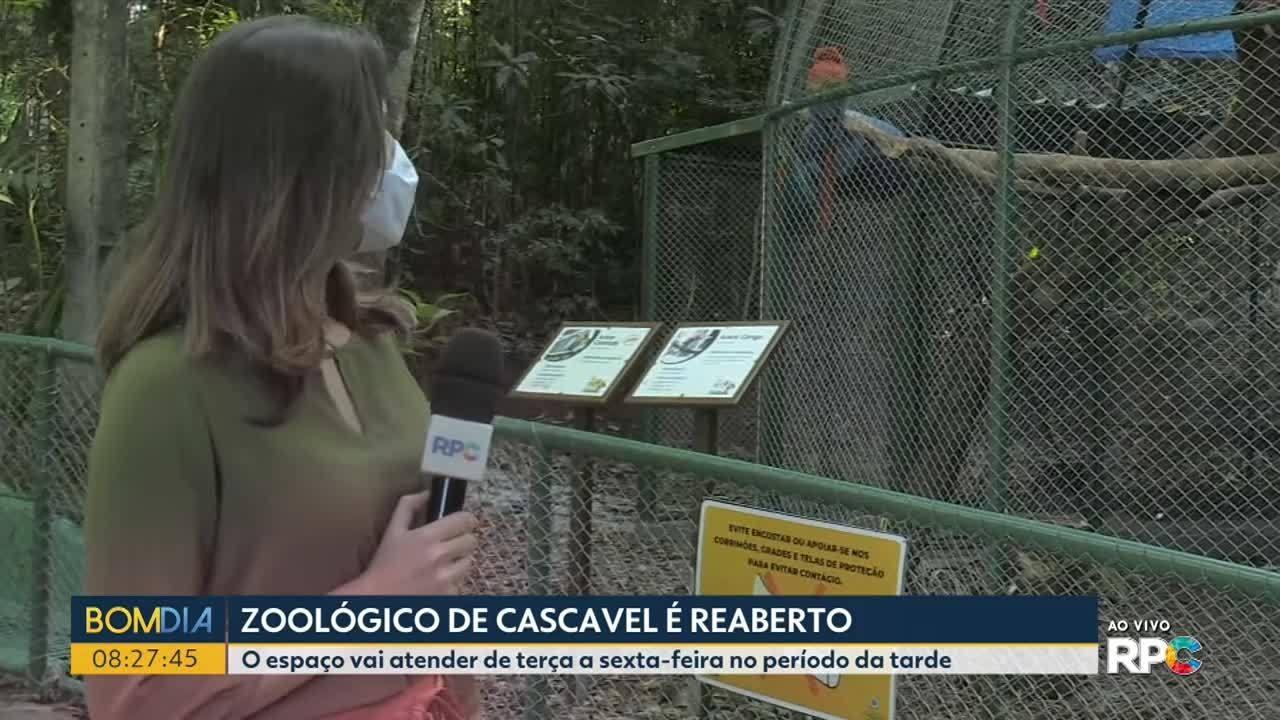Zoológico de Cascavel reabre nessa terça-feira