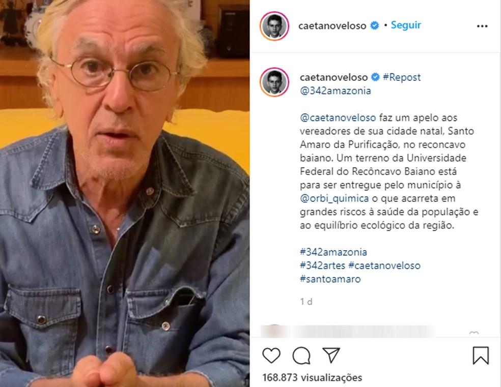 Caetano Veloso faz apelo para que terreno que seria da UFRB não seja doado fábrica — Foto: Reprodução/Instagram
