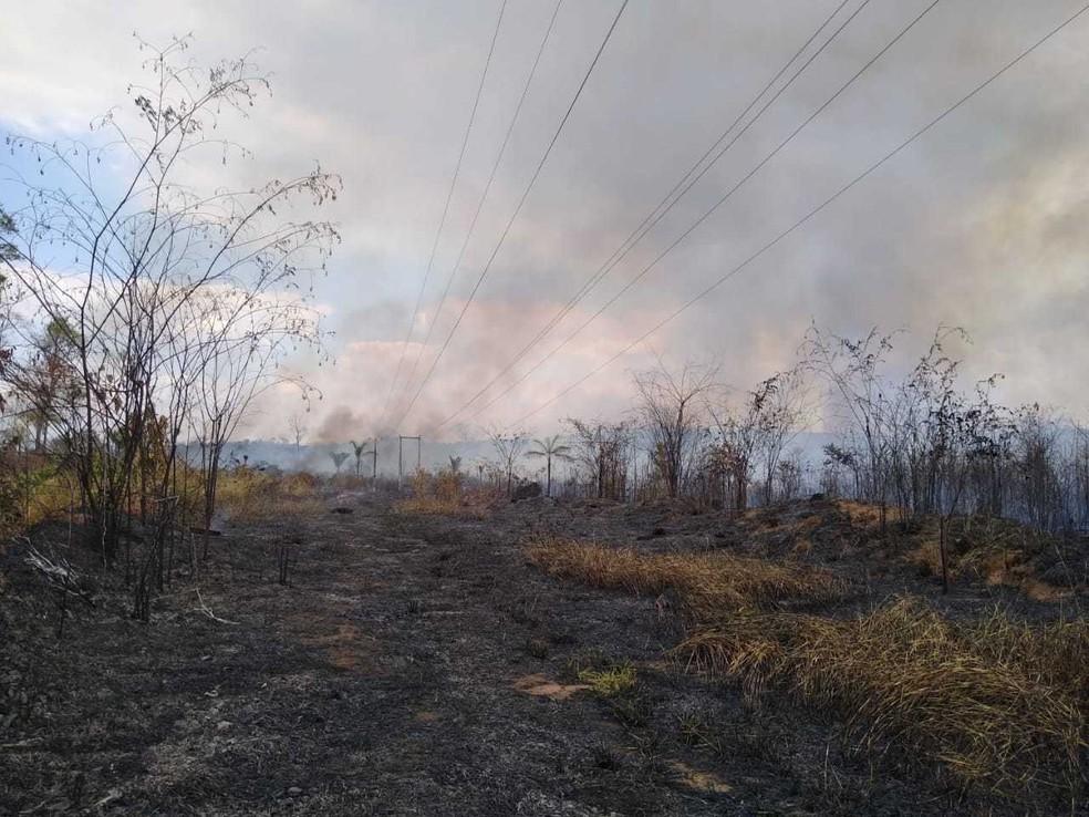Incêndio de grandes proporções atinge Reserva Margarida Alves em Nova União, RO — Foto: Reprodução