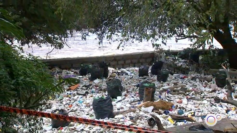 Prefeitura de Salto começa limpeza de lixo do Rio Tietê — Foto: Reprodução/TV TEM