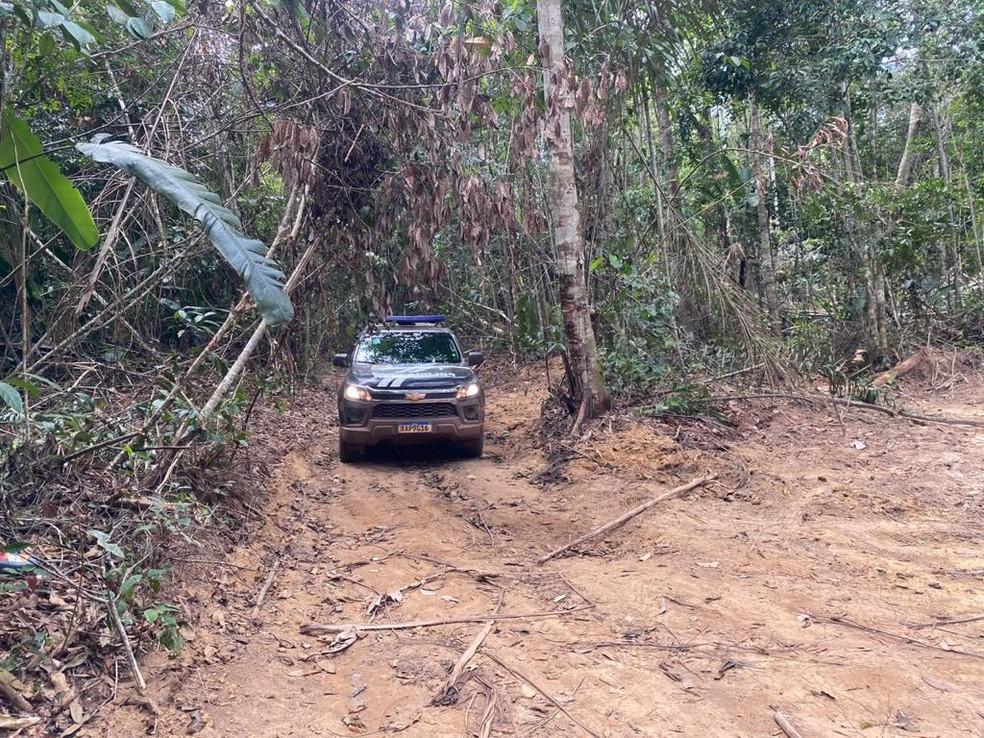Buscas são feitas em área extensa de mata densa — Foto: Polícia Civil-MT