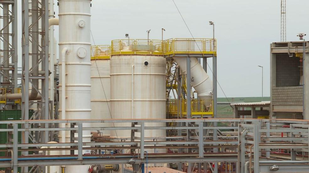 Vinhaça e torta de filtro, subprodutos da cana-de-açúcar, são usados para produção de energia em Guariba (SP) — Foto: Chico Escolano /EPTV