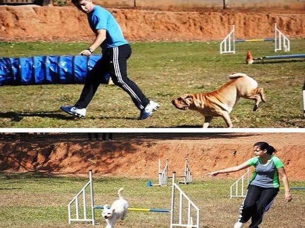 Tratamentos psicológicos para o cão (Foto: Luana/Arquivo Pessoal)