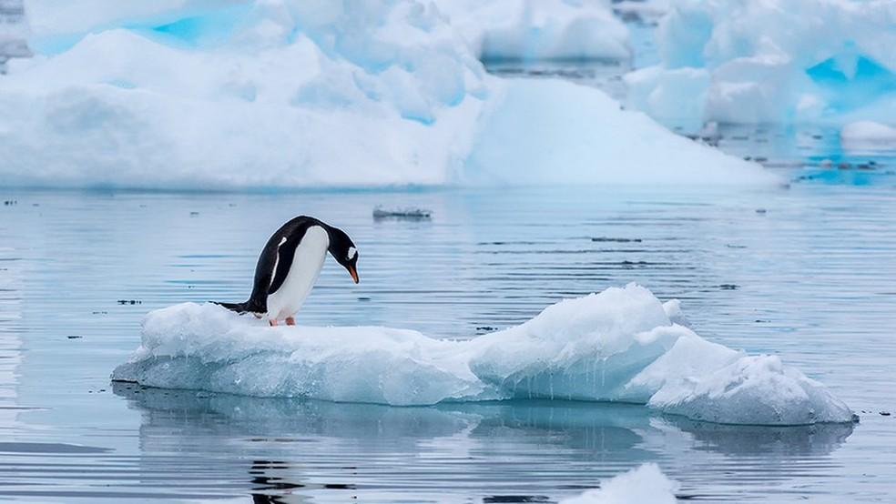 A Antártica não tem dono, mas 29 países com presença ativa no continente decidem seu presente e futuro — Foto: Getty Images via BBC