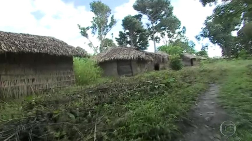 Área em conflito entre índios e fazendeiros em Viana, MA (Foto: Reprodução/ TV Globo)