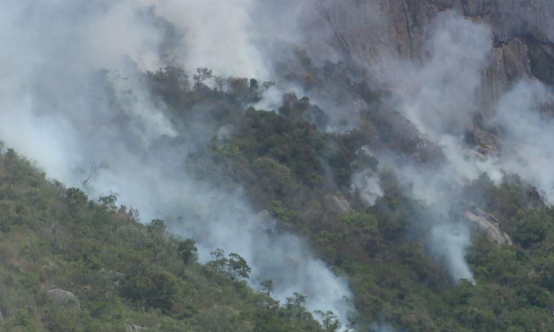 Dia do Meio Ambiente sem motivo para celebrar: MG tem aumento na quantidade de queimadas