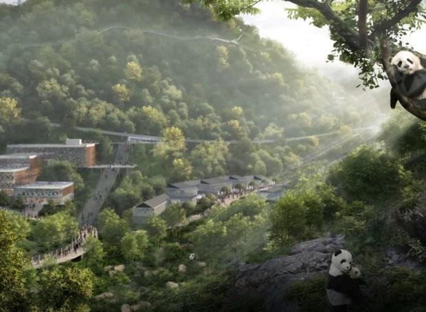 O design mistura a urbanização com a vida selvagem (Foto: China Discovery/ Reprodução)
