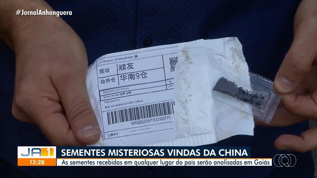 Agrodefesa analisa sementes misteriosas enviadas a brasileiros pela China