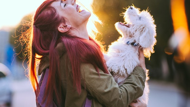cachorro; felicidade (Foto: Thinkstock)