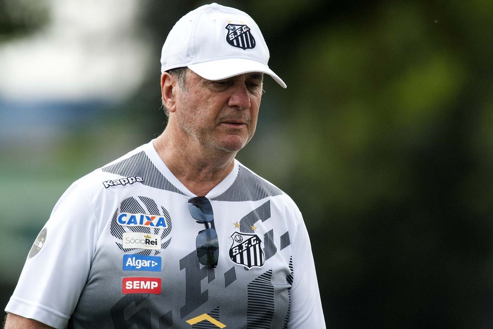 Levir não deve ficar no Santos em 2018 (Foto:  Ivan Storti/Santos FC)